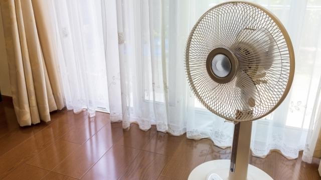 処分したい扇風機